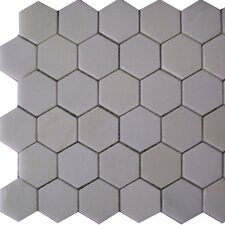 "Thassos 12"" x 12"" Hexagon Polished Marble Mosaic in White"