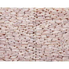 "<strong>Solistone</strong> Standing Pebbles 12"" x 4"" Interlocking Mesh Tile in Tesserat"