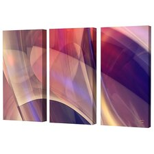 Magic Canyon Limited Edition by Scott J. Menaul 3 Piece Framed Graphic Art Set (Set of 3)