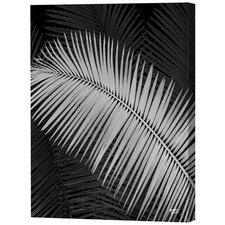 <strong>Menaul Fine Art</strong> Negative Palm Frond Limited Edition Canvas - Scott J. Menaul