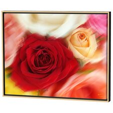 Roses Limited Edition Framed Canvas - Scott J. Menaul