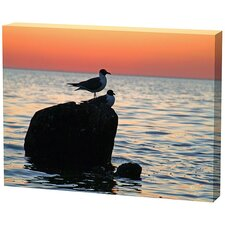 <strong>Menaul Fine Art</strong> Sunset Birds Limited Edition Canvas - Scott J. Menaul