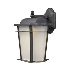 <strong>Elk Lighting</strong> Hampton Ridge 1 Light Outdoor LED Wall Lantern