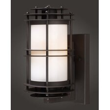 <strong>Elk Lighting</strong> Burbank 1 Light Outdoor Wall Lantern