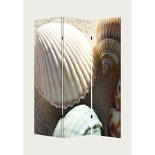 "<strong>Screen Gems</strong> 72"" x 48"" Sea Shell Screen 3 Panel Room Divider"
