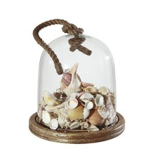 Seaside Glass Cloche with Rope and Wood Base