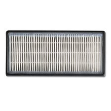 HEPAclean Replacement Air Filter (Set of 2)