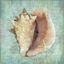 <strong>Vintage Signs</strong> Conch Wall Art by Suzanne Nicoll