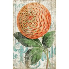 Suzanne Nicoll Zinnia Orange Graphic Art Plaque