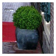 Artificial Boxwood Buxus Ball