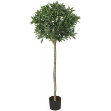 "60"" Artificial Laurel Ball Sweet Bay Tree"