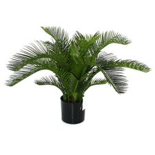 <strong>Flora Novara</strong> Artificial Sago Cycas Palm Desk Top Plant