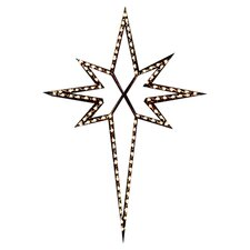 <strong>Holiday Lighting Specialists</strong> Large Star of Bethlehem