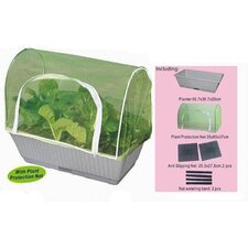 <strong>Creative Motion</strong> Garden Vegetable Planter Kit