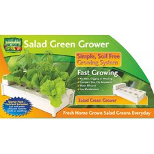 <strong>Creative Motion</strong> Salad Green Grower