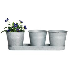 3 Piece Round Pot Planter Set on Tray