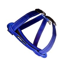 Chest Plate Harness in Blue