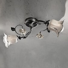 Firenze 2 Light Semi-Flush Mount