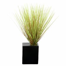 Floral Grass in Rectangle Ceramic Pot