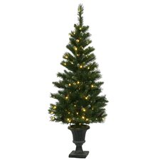 Ashberry 5' Green Artificial Christmas Tree with 120 LED White Lights