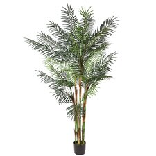 Deluxe Reed Palm Tree in Round Pot