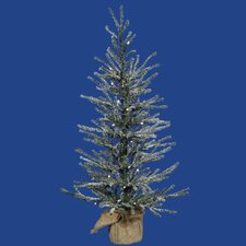 Frosted Angel 2' Pine Artificial Christmas Tree with 20 Clear Lights