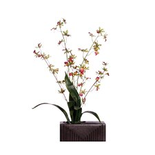 "<strong>Vickerman Co.</strong> Floral 29"" Artificial Potted Orchid in White and Pink Green"