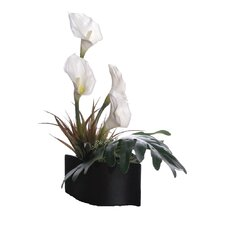 Floral Artificial Potted Calla Lilies in White