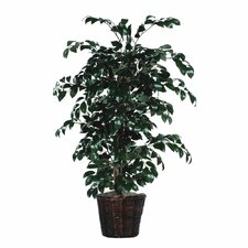 "Bushes 48"" Artificial Potted Natural Sakaki Ficus Tree in Dark Green"