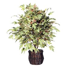 Deluxe Artificial Potted Natural Frosted Maple Tree in Basket