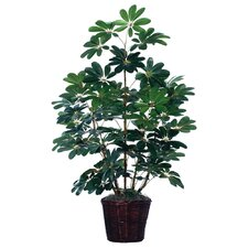 Deluxe 4' Artificial Schefflera Tree in Green