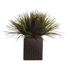 Floral Grass in Rectangle Pot