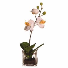 <strong>Vickerman Co.</strong> Floral Orchid in Square Vase