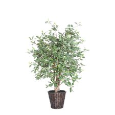 <strong>Vickerman Co.</strong> Blue Olive Tree in Basket