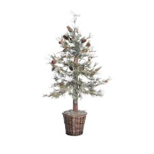 Blue Feather Pine Tree in Basket