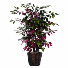 <strong>Vickerman Co.</strong> Bushes Artificial Potted Natural Capensia Tree in Basket