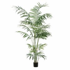 Tropical Palm Deluxe Tree in Pot