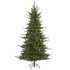 "Colorado 7' 6"" Green Slim Spruce Artificial Christmas Tree with 680 LED White Lights with Stand"