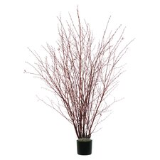 Natural Winter Birch Tree in Pot