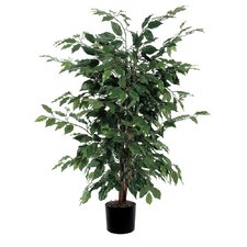 <strong>Vickerman Co.</strong> Ficus Bush Tree in Pot