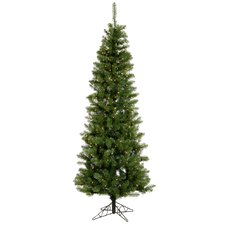 Salem Pencil Pine 6.5' Green Artificial Christmas Tree with 250 Clear Lights with Stand