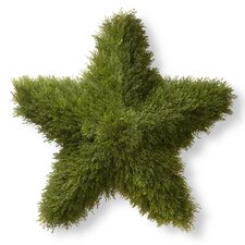 Juniper Star Topiary Statue
