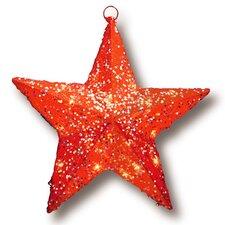 Pre-Lit Star Christmas Decoration