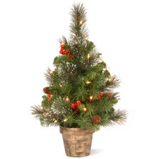 Crestwood Spruce 2' Green Small Artificial Christmas Tree with Clear Lights