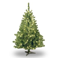 Kincaid Spruce 4' Green Artificial Christmas Tree with Clear Lights with Stand