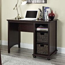 Warren Credenza Desk with 2 Water Hyacinth Storage Bins