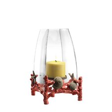 Coral and Shell Hurricane Candle