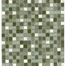 "Elida Glass 12"" x 12"" Mosaic in Seaweed Stone"