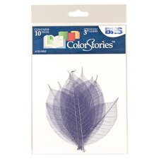 Colorstories Rubber Tree Skeleton Leaves (Set of 10)