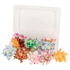 Irene's Garden Box O'Gardenia